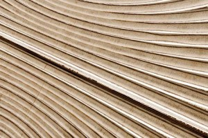 P32-detalle-Deco-Panel-Dec-ply
